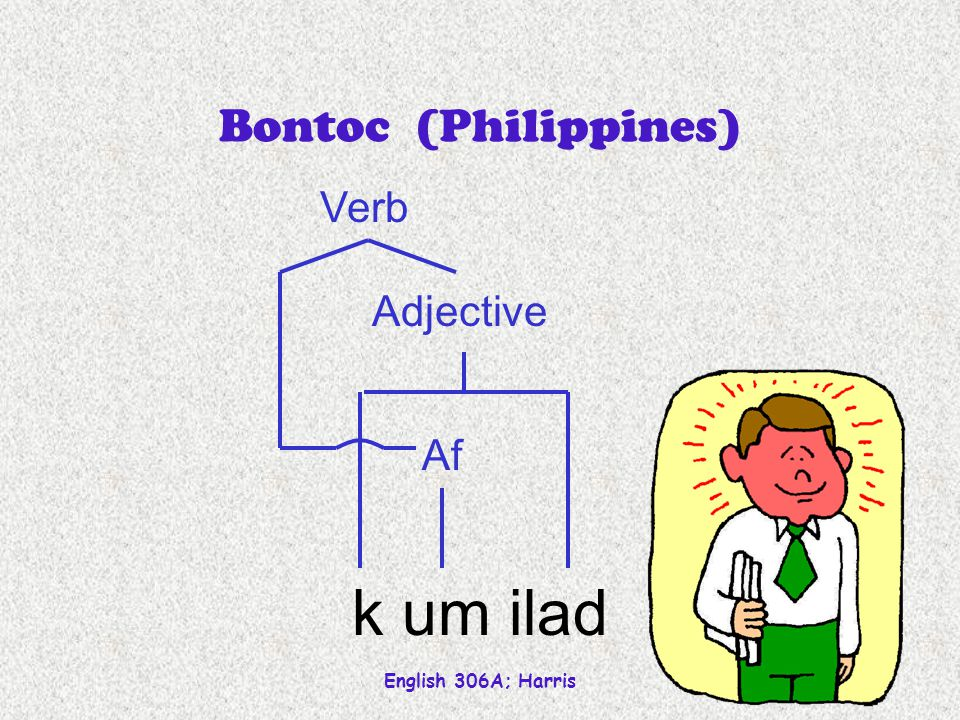 English 306A; Harris 37 Bontoc (Philippines) k um ilad Adjective Af Verb