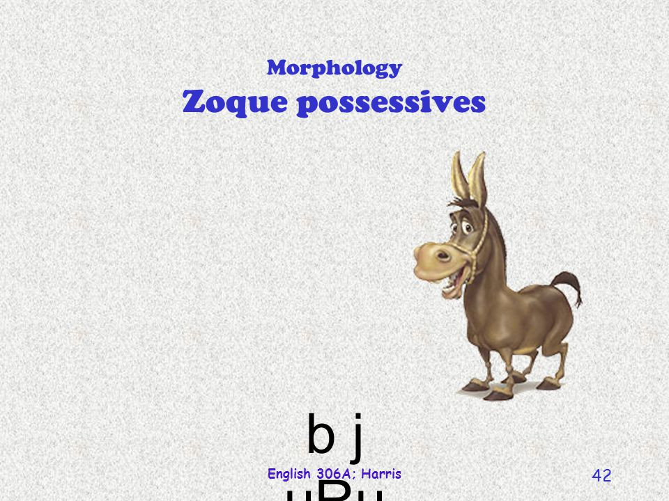 English 306A; Harris 42 Morphology Zoque possessives b j uRu