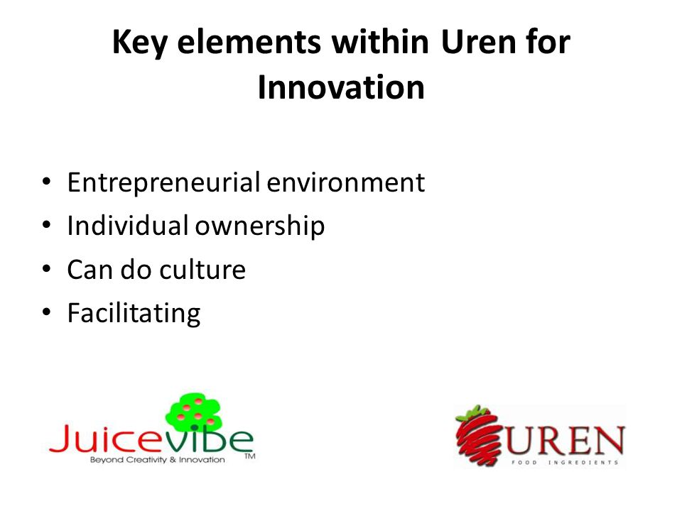 Key elements within Uren for Innovation Entrepreneurial environment Individual ownership Can do culture Facilitating