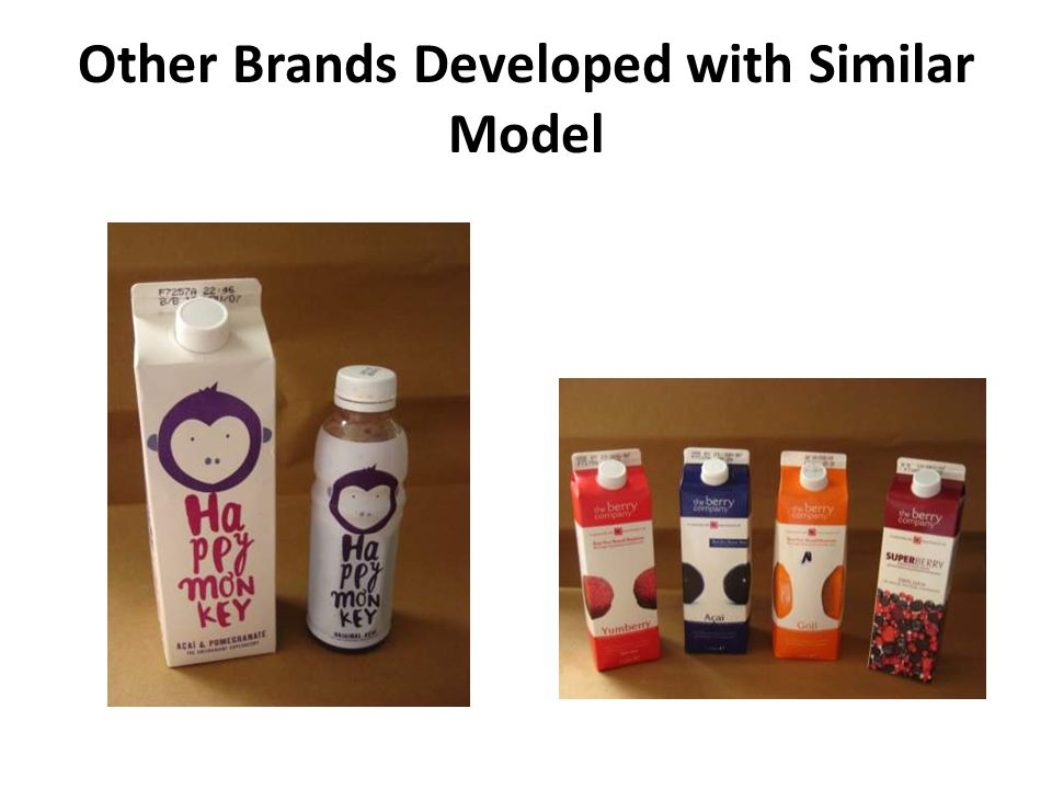 Other Brands Developed with Similar Model