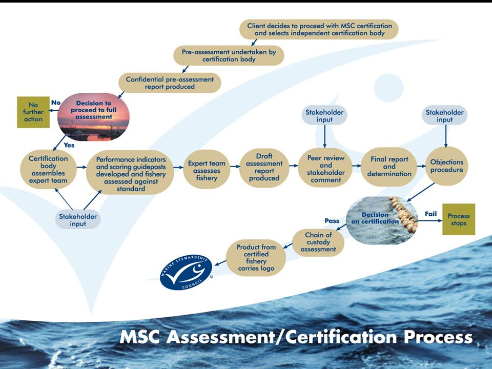 Fishery Certification