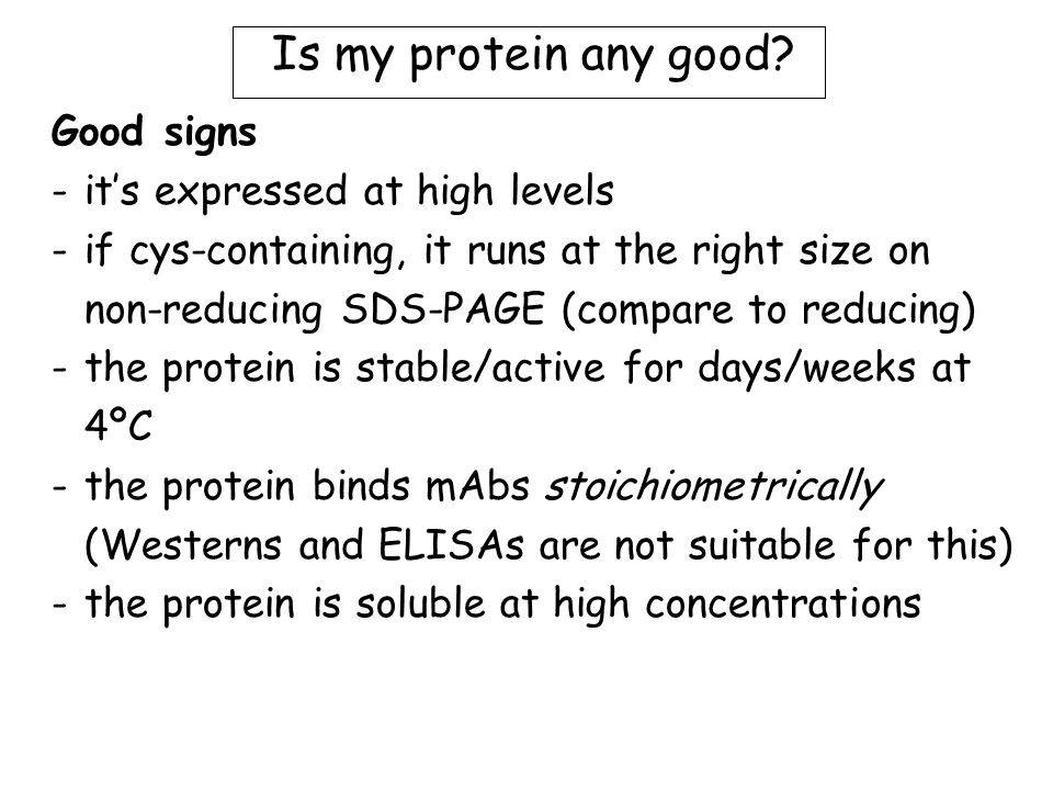 Is my protein any good.