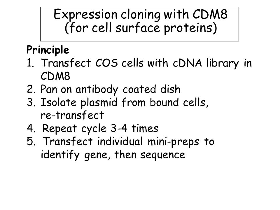Principle 1.Transfect COS cells with cDNA library in CDM8 2.Pan on antibody coated dish 3.Isolate plasmid from bound cells, re-transfect 4.