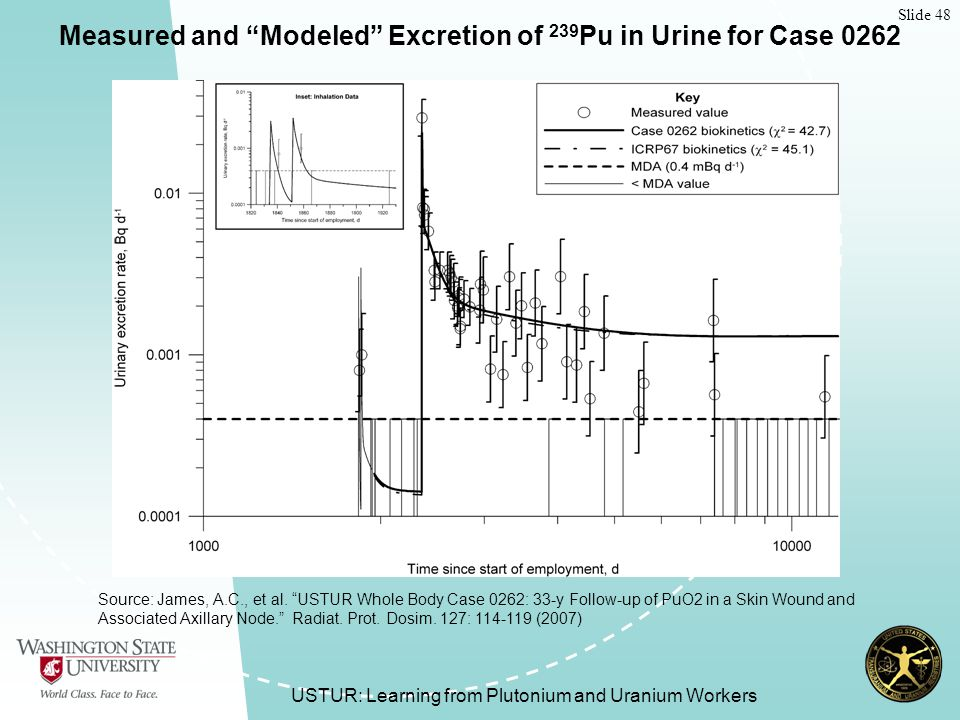 Slide 48 USTUR: Learning from Plutonium and Uranium Workers Measured and Modeled Excretion of 239 Pu in Urine for Case 0262 Source: James, A.C., et al.