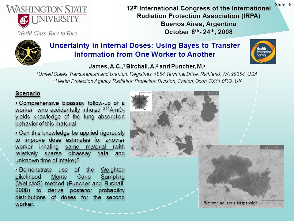 Slide 56 12 th International Congress of the International Radiation Protection Association (IRPA) Buenos Aires, Argentina October 8 th - 24 th, 2008 Uncertainty in Internal Doses: Using Bayes to Transfer Information from One Worker to Another Scenario Comprehensive bioassay follow-up of a worker who accidentally inhaled 241 AmO 2 yields knowledge of the lung absorption behavior of this material.