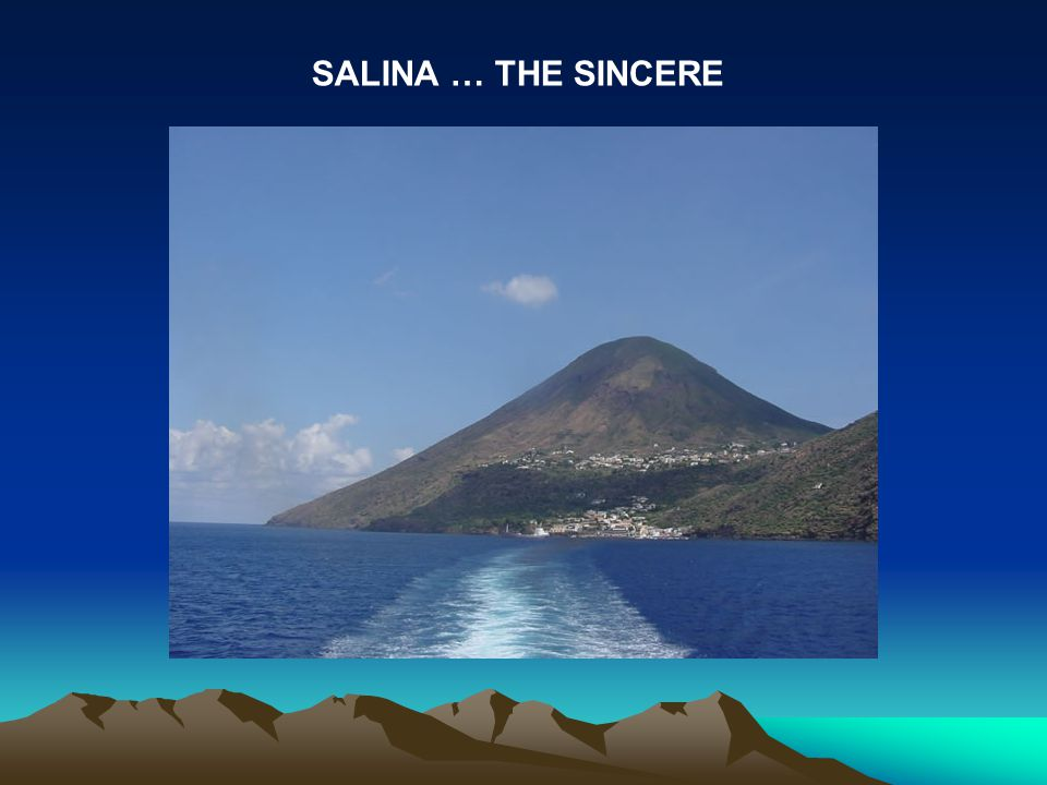 SALINA … THE SINCERE
