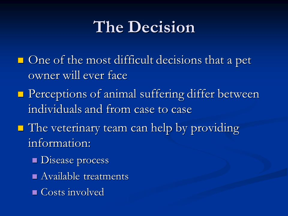 The Decision One of the most difficult decisions that a pet owner will ever face One of the most difficult decisions that a pet owner will ever face P