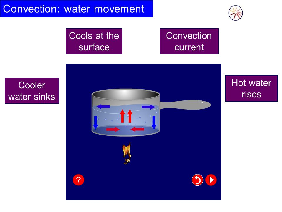Convection: water movement Hot water rises Cooler water sinks Convection current Cools at the surface