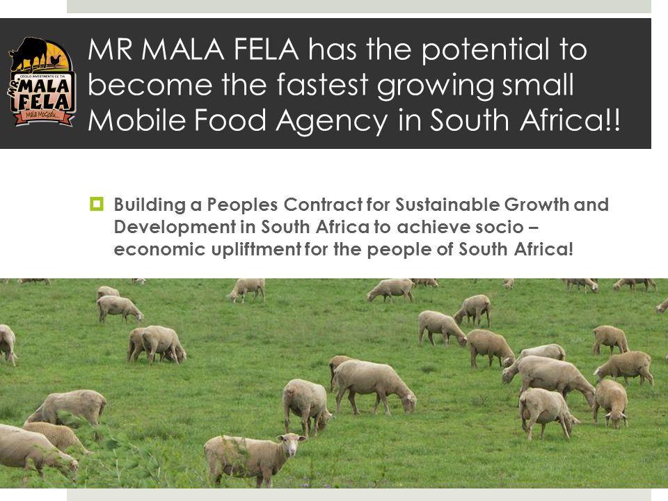 MR MALA FELA has the potential to become the fastest growing small Mobile Food Agency in South Africa!!  Building a Peoples Contract for Sustainable