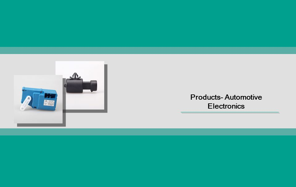 Products- Automotive Electronics