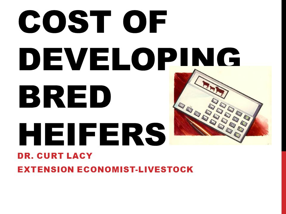 COST OF DEVELOPING BRED HEIFERS DR. CURT LACY EXTENSION ECONOMIST-LIVESTOCK