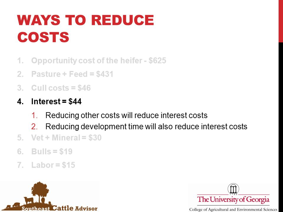 WAYS TO REDUCE COSTS 1.Opportunity cost of the heifer - $625 2.Pasture + Feed = $431 3.Cull costs = $46 4.Interest = $44 1.Reducing other costs will reduce interest costs 2.Reducing development time will also reduce interest costs 5.Vet + Mineral = $30 6.Bulls = $19 7.Labor = $15