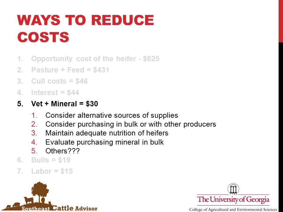 WAYS TO REDUCE COSTS 1.Opportunity cost of the heifer - $625 2.Pasture + Feed = $431 3.Cull costs = $46 4.Interest = $44 5.Vet + Mineral = $30 1.Consider alternative sources of supplies 2.Consider purchasing in bulk or with other producers 3.Maintain adequate nutrition of heifers 4.Evaluate purchasing mineral in bulk 5.Others??.