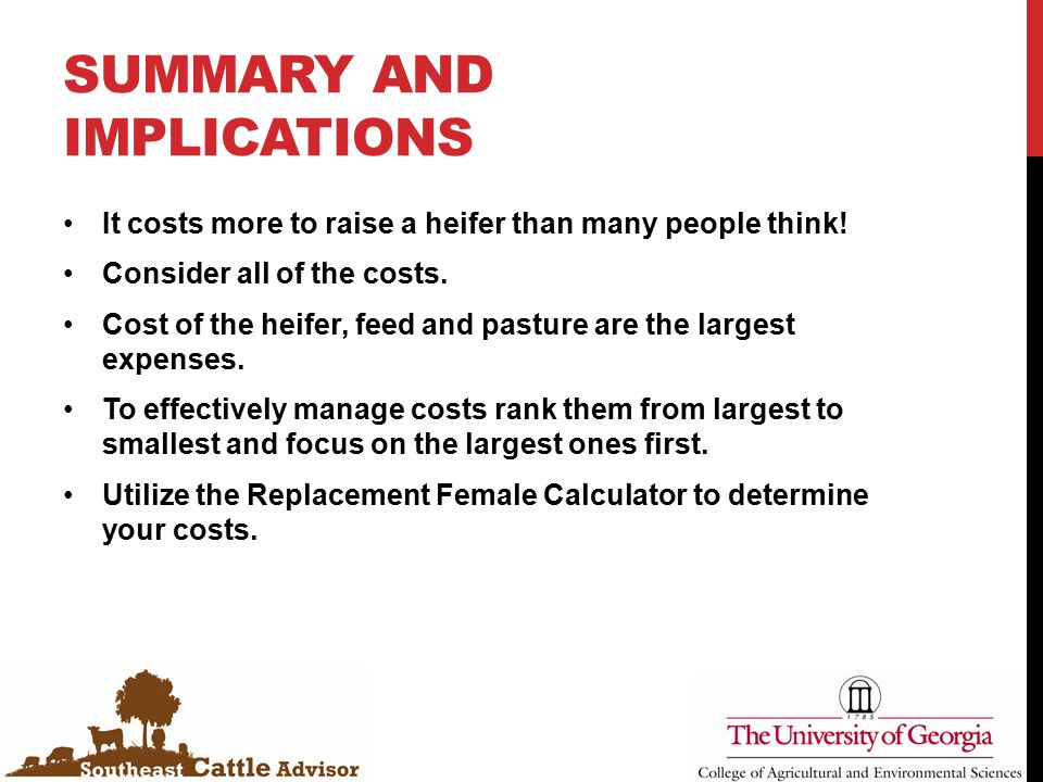 SUMMARY AND IMPLICATIONS It costs more to raise a heifer than many people think! Consider all of the costs. Cost of the heifer, feed and pasture are t