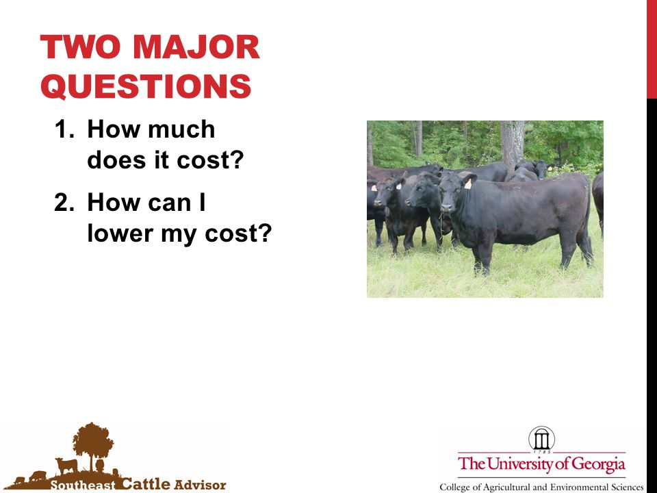 TWO MAJOR QUESTIONS 1.How much does it cost? 2.How can I lower my cost?