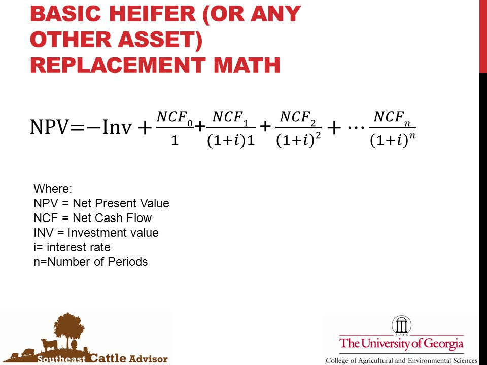 BASIC HEIFER (OR ANY OTHER ASSET) REPLACEMENT MATH Where: NPV = Net Present Value NCF = Net Cash Flow INV = Investment value i= interest rate n=Number