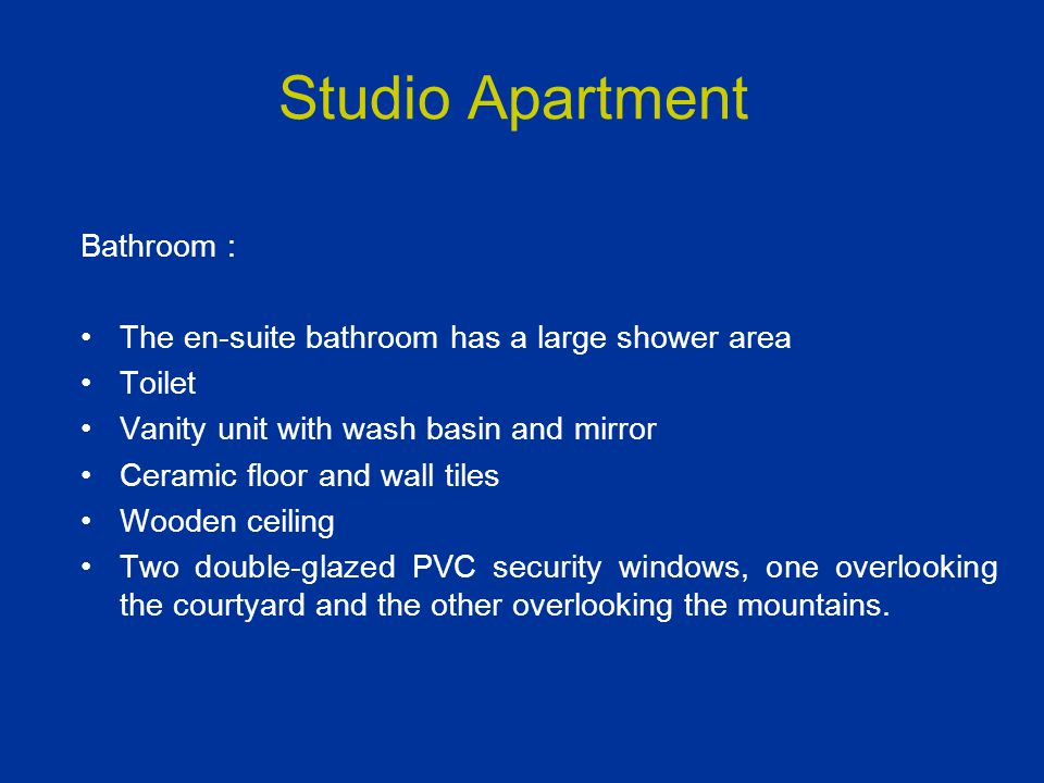 Studio Apartment Bathroom : The en-suite bathroom has a large shower area Toilet Vanity unit with wash basin and mirror Ceramic floor and wall tiles W