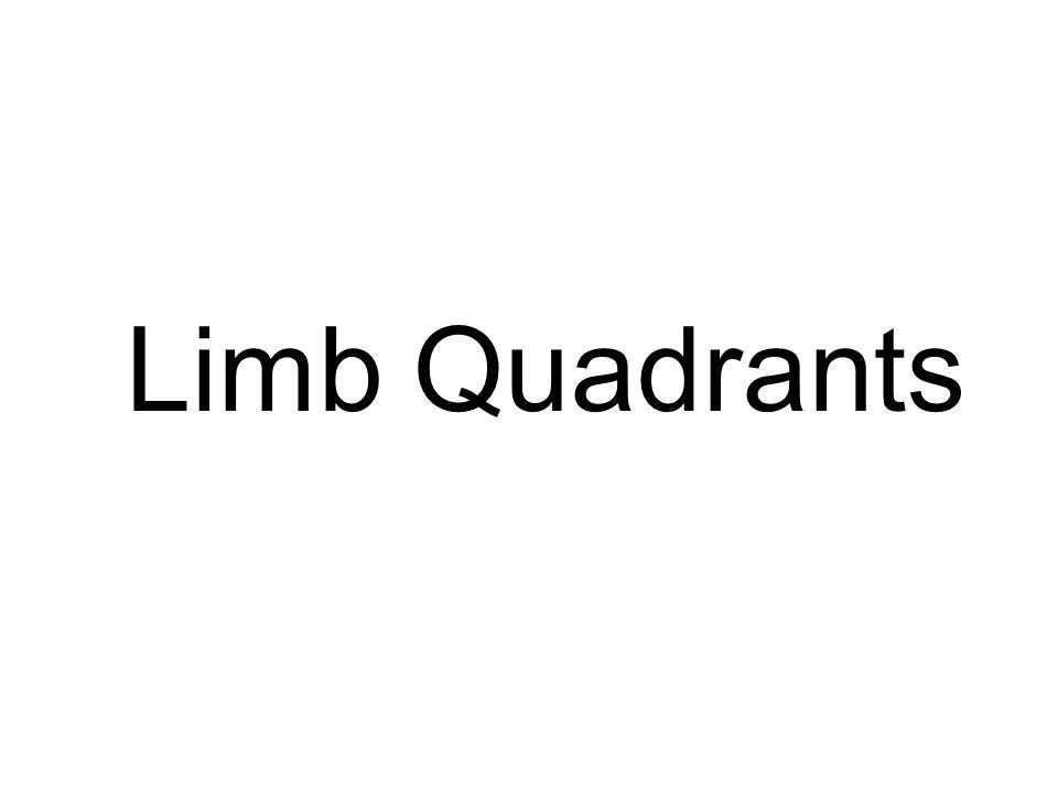 Limb Quadrants