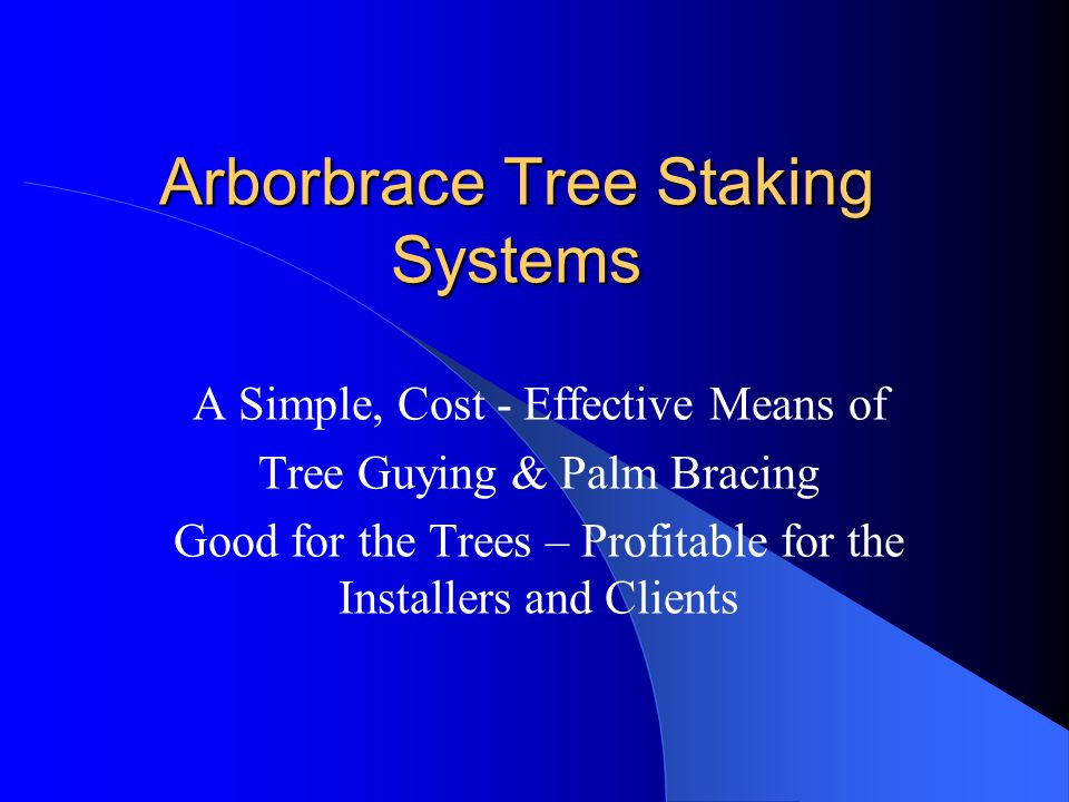 Arborbrace Palm Tree Bracing Simple – Fast System Saves Time and Material Costs Will not girdle the tree