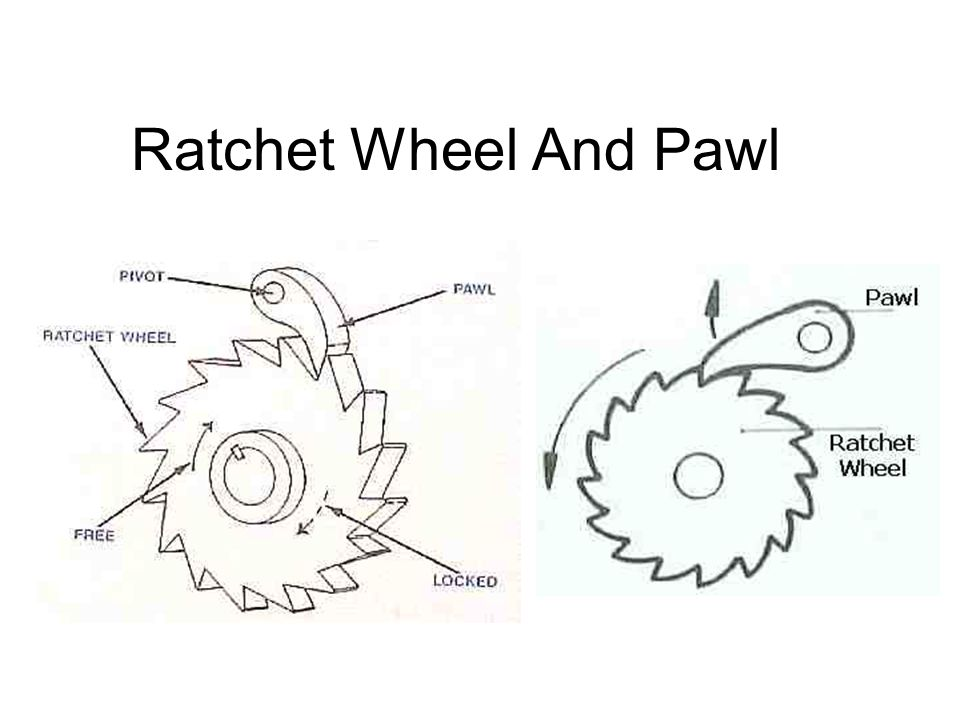 Ratchet Wheel And Pawl