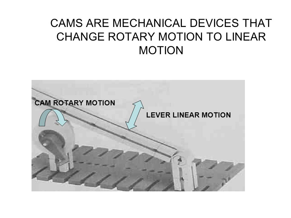CAMS ARE MECHANICAL DEVICES THAT CHANGE ROTARY MOTION TO LINEAR MOTION CAM ROTARY MOTION LEVER LINEAR MOTION