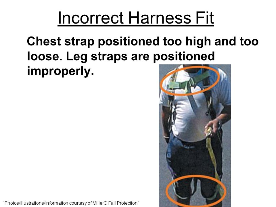 "Incorrect Harness Fit Chest strap positioned too high and too loose. Leg straps are positioned improperly. ""Photos/Illustrations/Information courtesy"