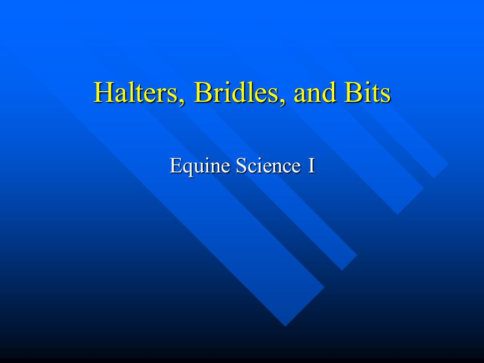 Halters, Bridles, and Bits Equine Science I