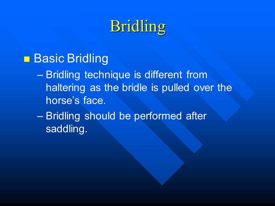 Bridling Basic Bridling – –Bridling technique is different from haltering as the bridle is pulled over the horse's face. – –Bridling should be perform