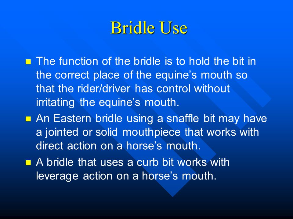 Bridle Use Bridle Use The function of the bridle is to hold the bit in the correct place of the equine's mouth so that the rider/driver has control wi