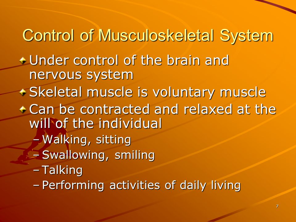 7 Control of Musculoskeletal System Under control of the brain and nervous system Skeletal muscle is voluntary muscle Can be contracted and relaxed at