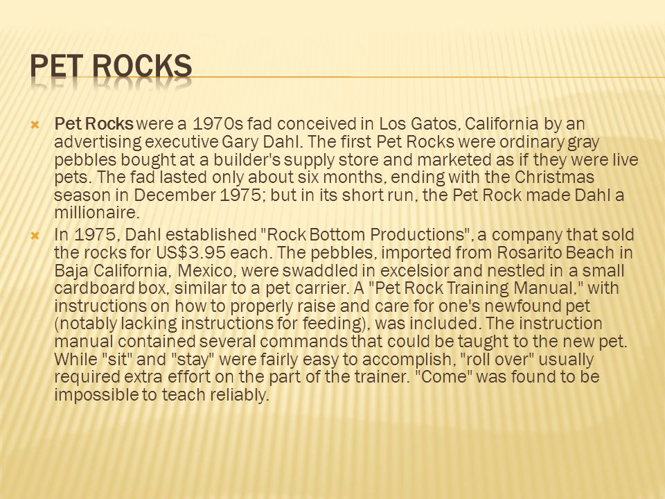  Pet Rocks were a 1970s fad conceived in Los Gatos, California by an advertising executive Gary Dahl.