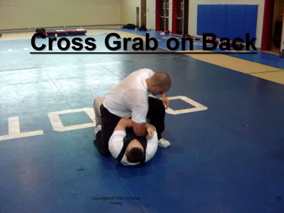 Cross Grab on Back copyrighted 1992 by Dave Young 75
