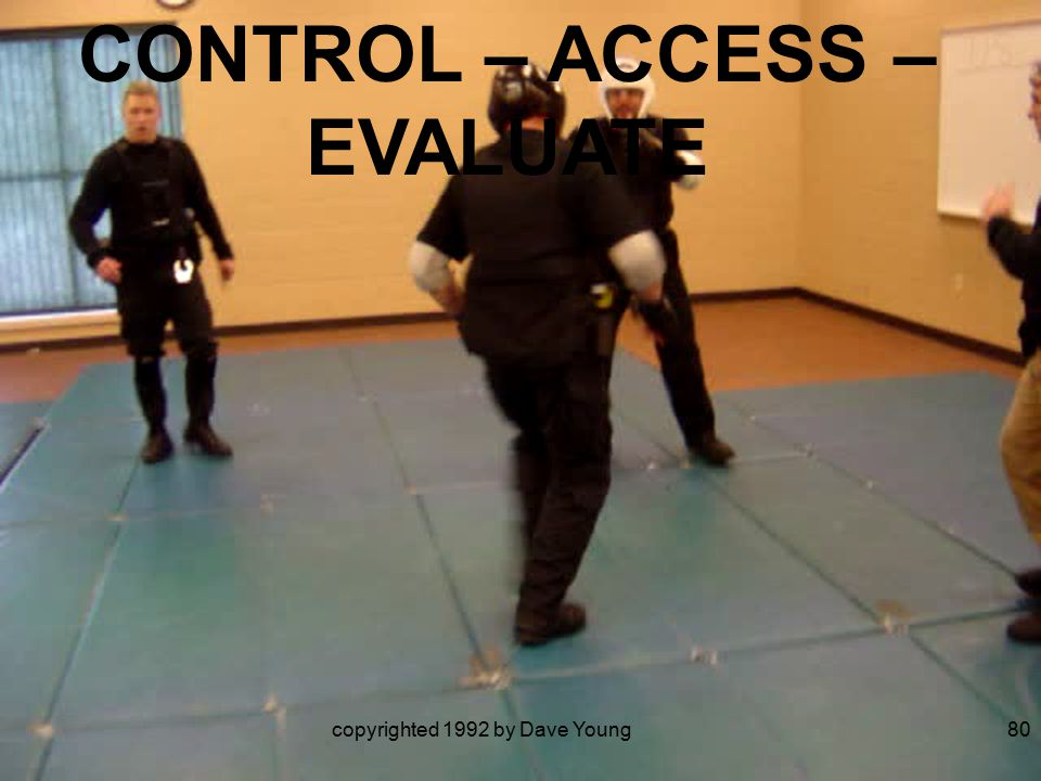 copyrighted 1992 by Dave Young80 CONTROL – ACCESS – EVALUATE