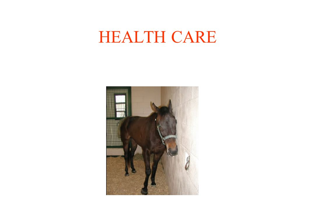 Disease Prevention Equine Infectious Anemia –Coggins Test