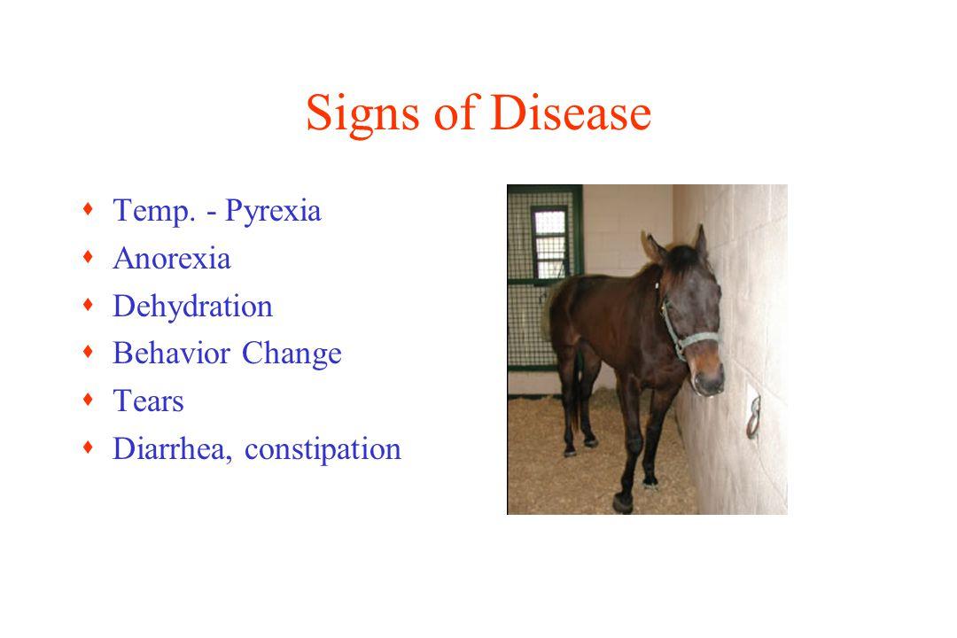 Signs of Disease sTemp. - Pyrexia sAnorexia sDehydration sBehavior Change sTears sDiarrhea, constipation