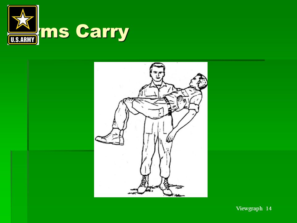Viewgraph 14 Arms Carry