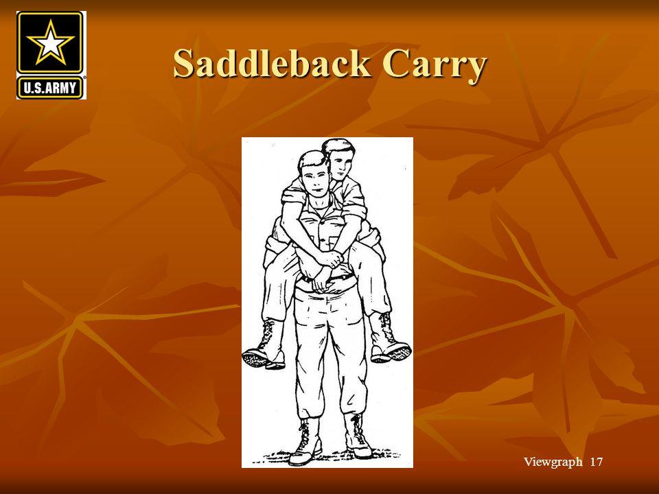Viewgraph 17 Saddleback Carry