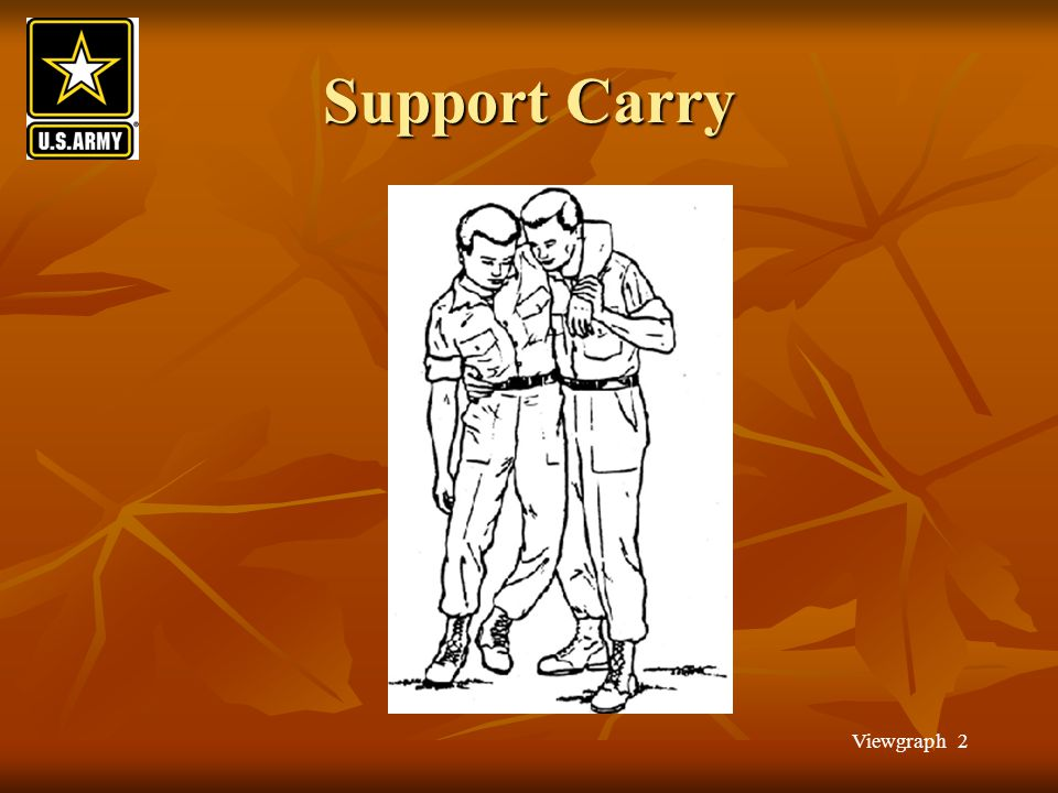 Viewgraph 2 Support Carry