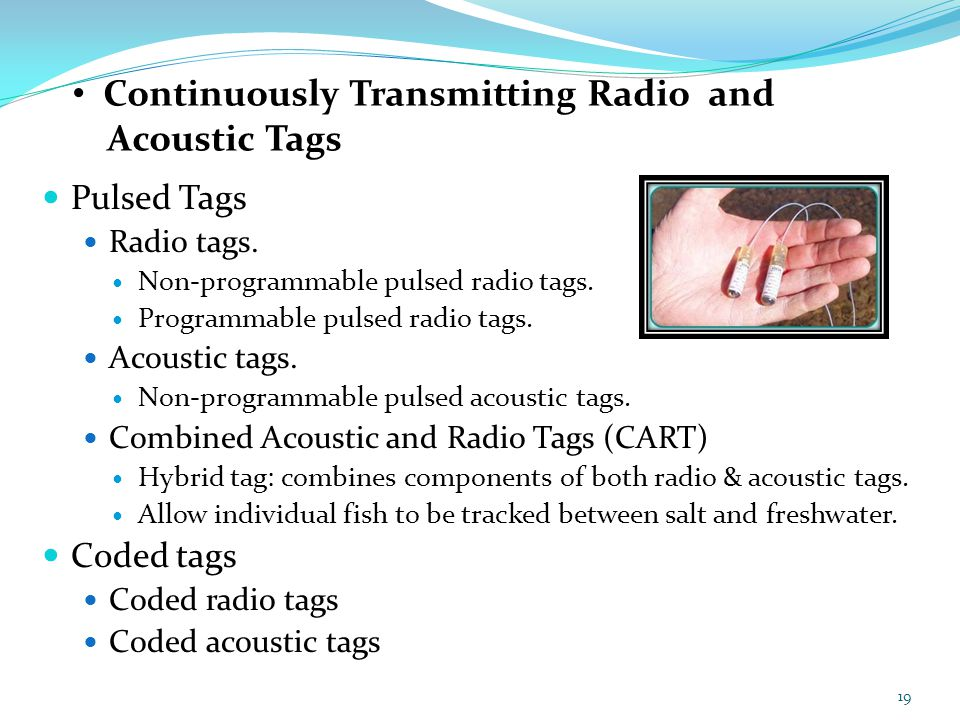 Continuously Transmitting Radio and Acoustic Tags Pulsed Tags Radio tags. Non-programmable pulsed radio tags. Programmable pulsed radio tags. Acoustic
