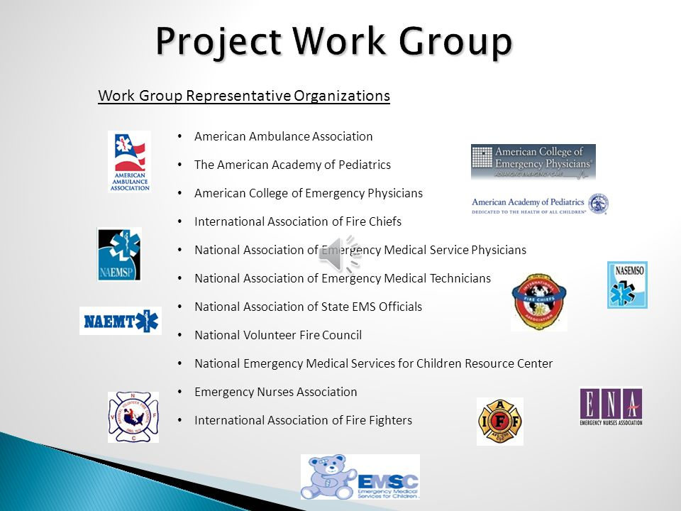 Project Work Group Work Group Representative Organizations American Ambulance Association The American Academy of Pediatrics American College of Emerg