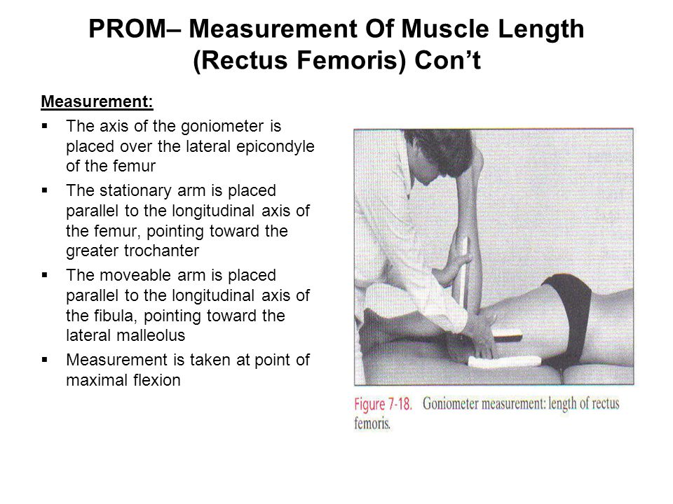 PROM– Measurement Of Muscle Length (Rectus Femoris) Con't Measurement:  The axis of the goniometer is placed over the lateral epicondyle of the femur  The stationary arm is placed parallel to the longitudinal axis of the femur, pointing toward the greater trochanter  The moveable arm is placed parallel to the longitudinal axis of the fibula, pointing toward the lateral malleolus  Measurement is taken at point of maximal flexion