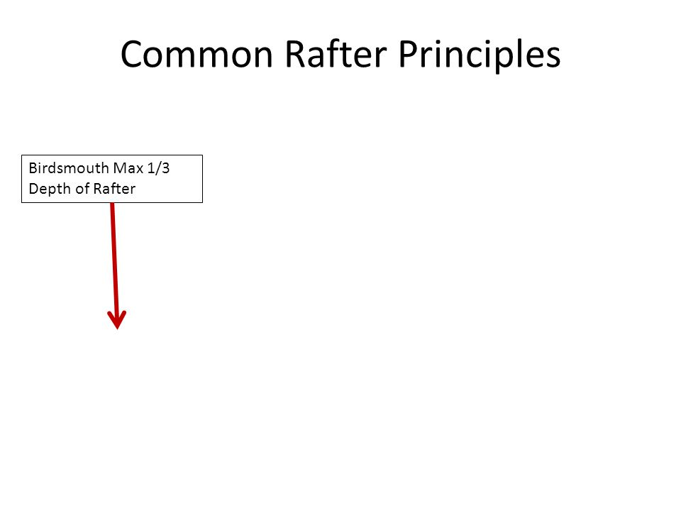 Common Rafter Principles Birdsmouth Max 1/3 Depth of Rafter