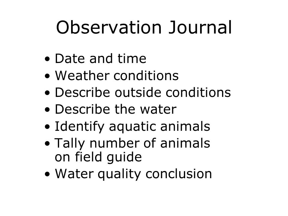 Observation Journal Date and time Weather conditions Describe outside conditions Describe the water Identify aquatic animals Tally number of animals on field guide Water quality conclusion