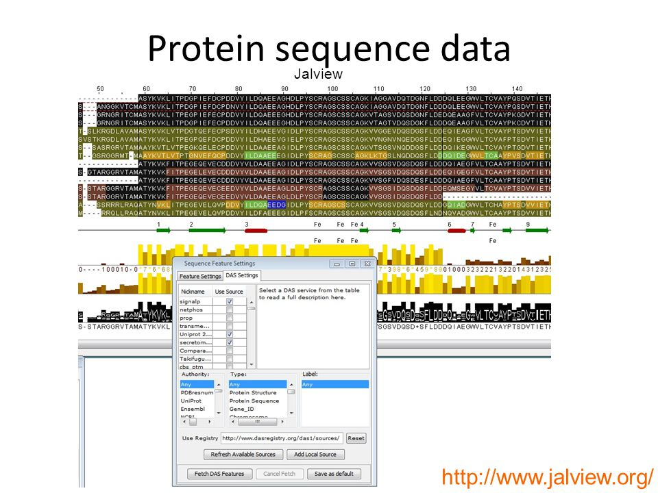 http://www.jalview.org/ Jalview Protein sequence data