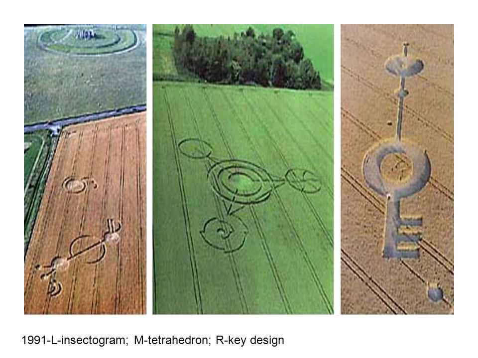 1991-L-insectogram; M-tetrahedron; R-key design