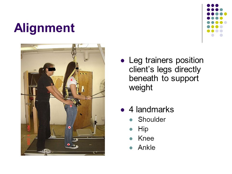 Alignment Leg trainers position client's legs directly beneath to support weight 4 landmarks Shoulder Hip Knee Ankle