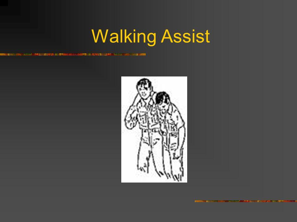 Walking Assist