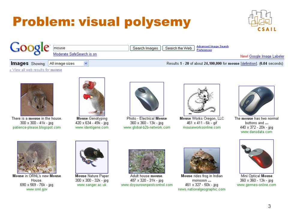 3 Problem: visual polysemy