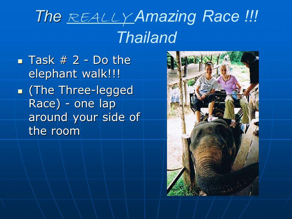 The The REALLY Amazing Race !!. Thailand Task # 2 - Do the elephant walk!!.