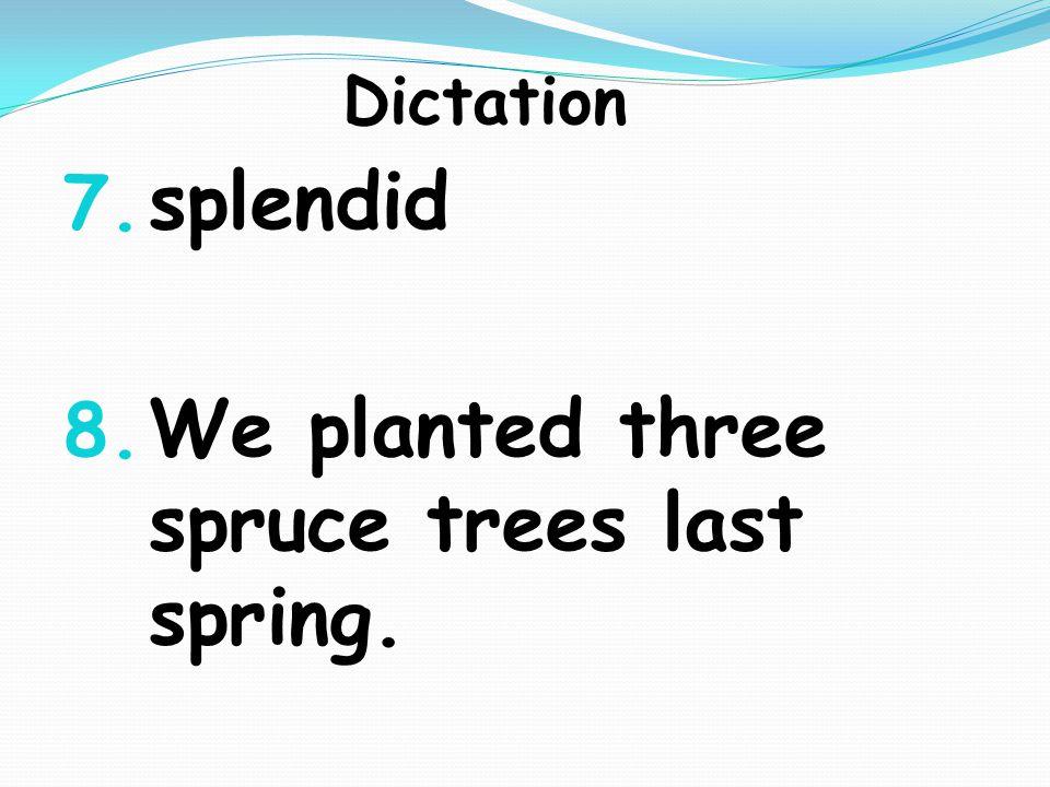 Dictation 7. splendid 8. We planted three spruce trees last spring.